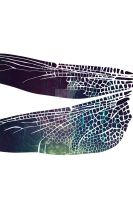 dragonfly wing by mel-an-choly