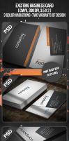 Exciting Business Card by VadimSoloviev