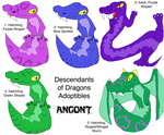 Descendants of Dragons Adoptables Angont 1 by mars714