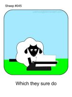 Sheep 45 by cakhost