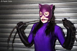 90's Catwoman - DC Comic by Paper-Cube