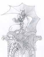 The Goddamn Batman by theopticnerve