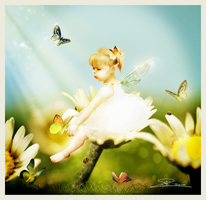 The Daisyfaerie by Toefje-Kunst