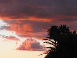 Sunset 121314 02 by acurmudgeon