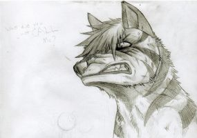 What...SKETCH by KasaraWolf