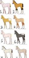 Foal Adoptables (3,4, and 7 left! ) by emmy1320