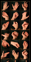 Hands Reference by Pikishi