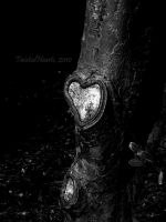 The Giving Tree... by TwistedHearts