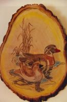 Woodburning by lawout16