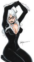 Black Cat 2 by ChrisOzFulton