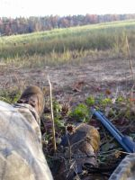 Early Muzzleloader Season by DC4894