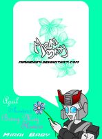 TF Journal: May 2008 by miraibaby