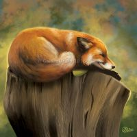 Fox Nap - SpeedPaint by GoldenDruid