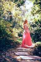 photography: aurora 01 by Inspiral