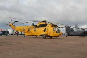 Sea King X by james147741