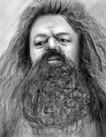 HP: Hagrid by freshberries
