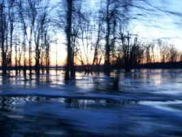Swamps Of A Frozen Wasteland by CR4ZY-CHR1S