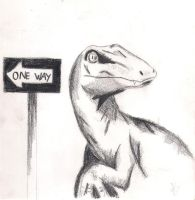 One Way by BingoRock16