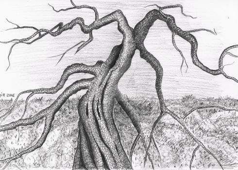 A scary tree by Eladie