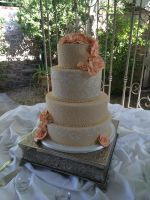 wedding cake 223 by ninny85310