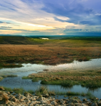 FIELD PREMADE BACKGROUND by Mouliny