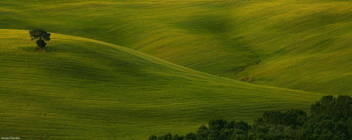 Tuscany 3 by pestilence