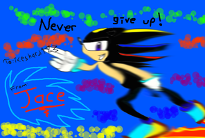 Never Give Up iceshard123 by sonic654