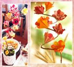 Origami Flowers Decoration by wk-omittchi