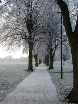 Winter in Leicester VIII by whiskyboy