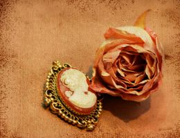 Vintage Remembrance by esthermyla