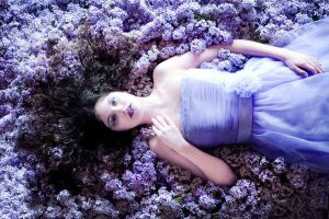 Lilac Fairytale I by MiriamPeuser