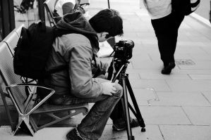 The Stree Video Maker by EarthHart