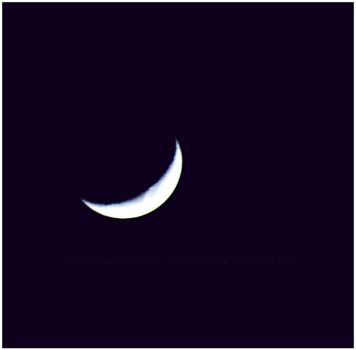 Smiling Crescent by GrotesqueDarling13