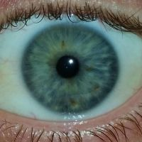Eye / iris closeup - Eye Stock 01 by keetek