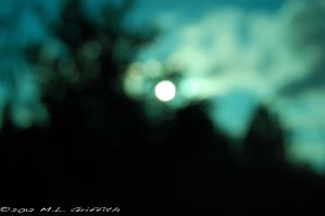Blurred Sun Through Trees 03 by M-L-Griffith