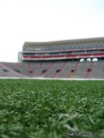 Stadium From an Ant's POV by livelysmile