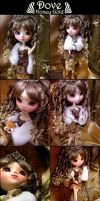 Dove +Honey Gold Princess+ by luciole