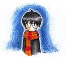 harrypotter. by chelx