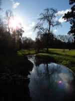 Fontainebleau Park 01 by Tain0s
