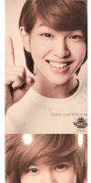 SHINee SMTown Goods by EverKiss