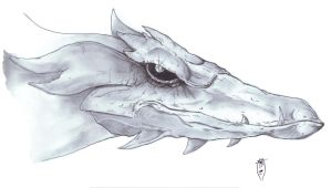 Dragon Head (Pencils) by AzrielMordecai