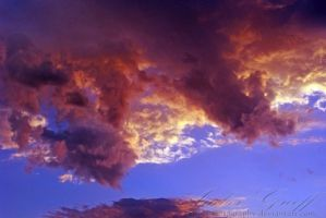 0030 - The Evening Dragon by AmberPhotography