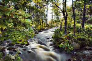water brook by shaina74