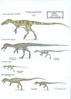 Compsignathus Medely by Ashere
