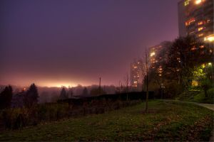 foggy evening by m00v
