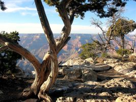STOCK Grand Canyon17 by EscapeFromWonderland