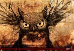 the_owl by NO-side