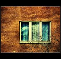 wall and window by Trifoto