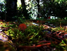 Breathing Undergrowth by Khanorr