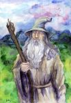 Gandalf Grey by Le-ARi